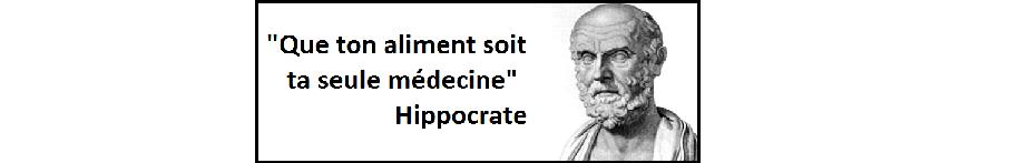 Hippocrate 02